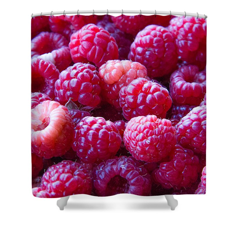 Organic Raspberries Shower Curtain featuring the photograph Homegrown Organic Raspberries, Chiloquin Oregon by Tirza Roring
