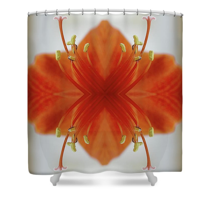 Tranquility Shower Curtain featuring the photograph Red Amaryllis Flower by Silvia Otte