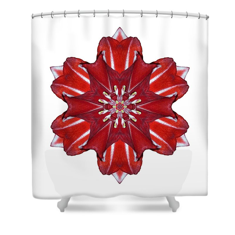 Flower Shower Curtain featuring the photograph Red And White Amaryllis Vii Flower Mandala White by David J Bookbinder