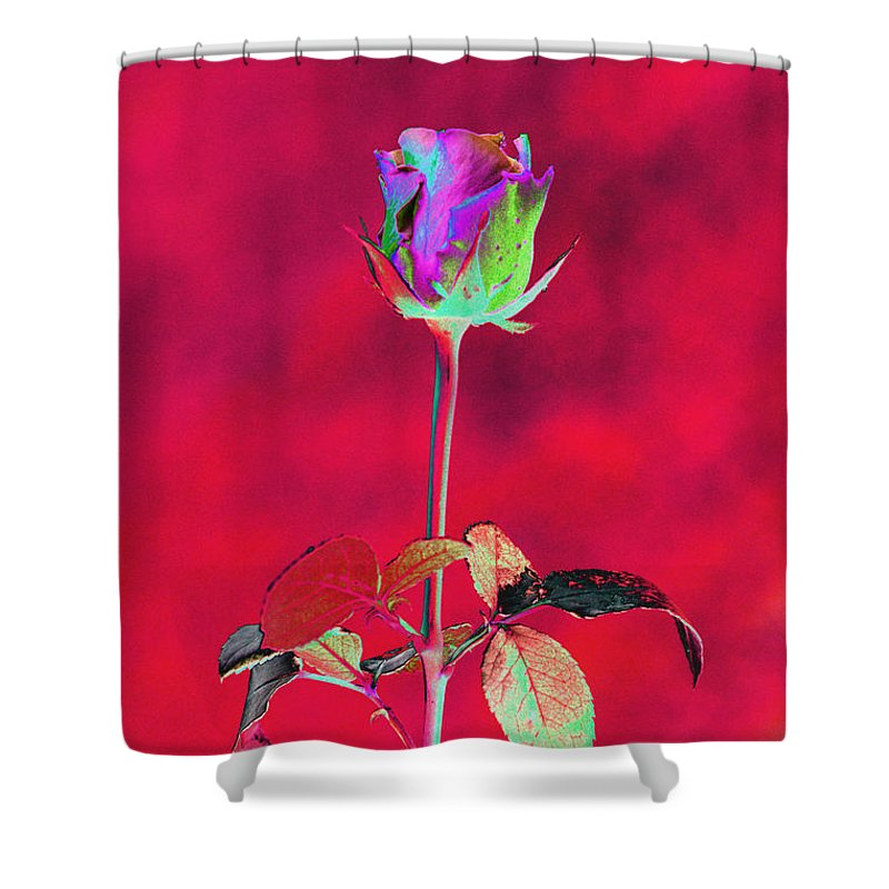 Red Shower Curtain featuring the digital art Red Beauty by Carol Lynch