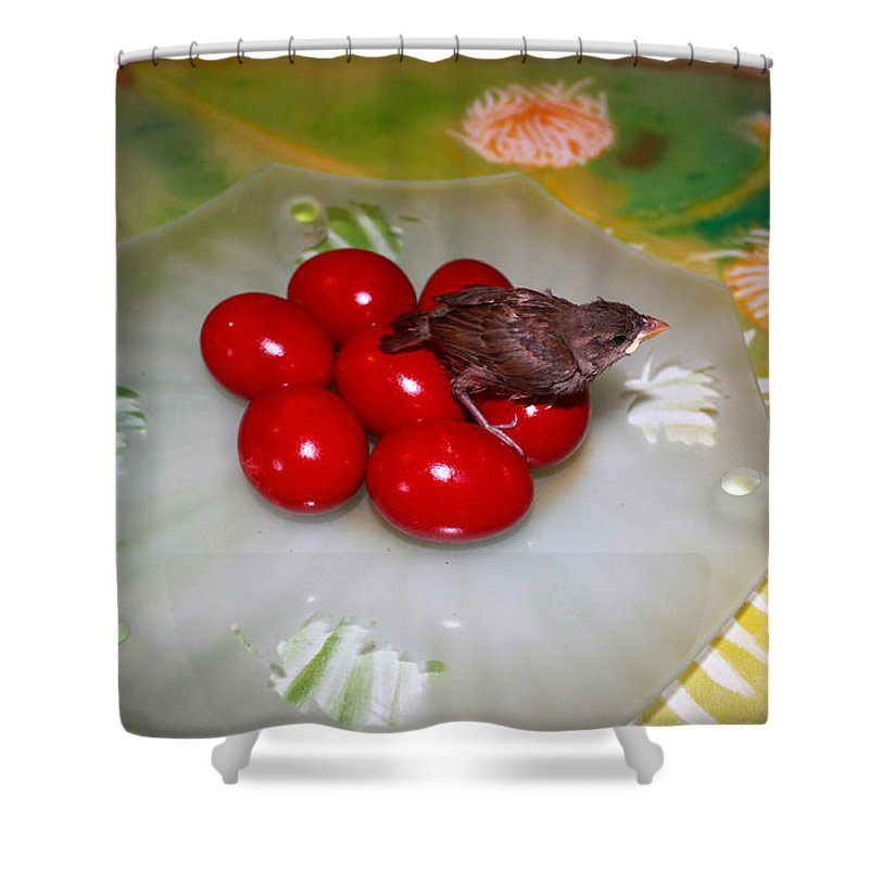 Augusta Stylianou Shower Curtain featuring the photograph Red Eggs Bird And Flowers by Augusta Stylianou
