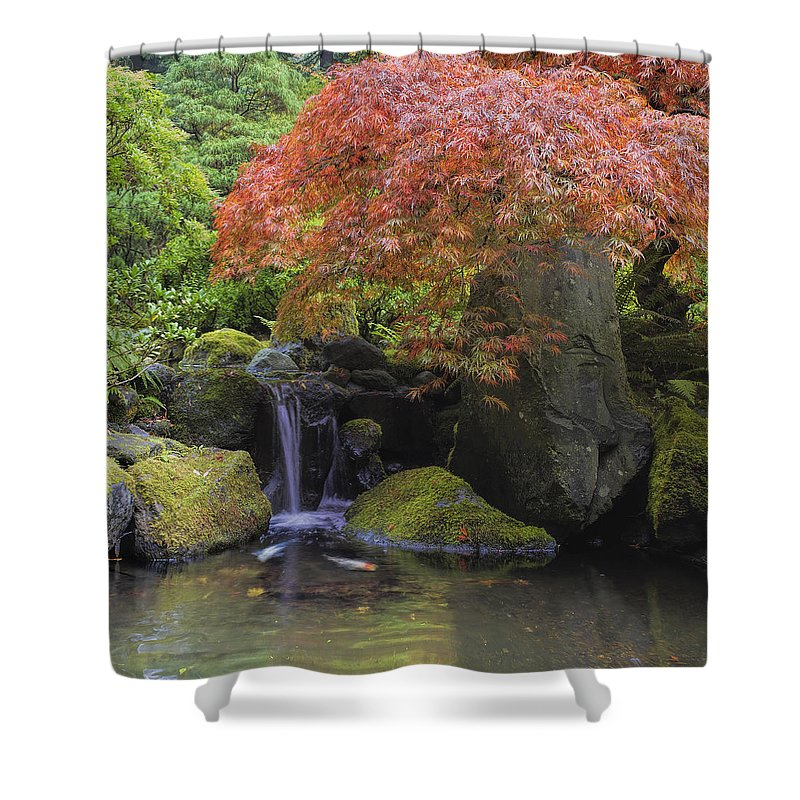 Japanese Shower Curtain featuring the photograph Red Maple Tree Over Waterfall Pond by David Gn