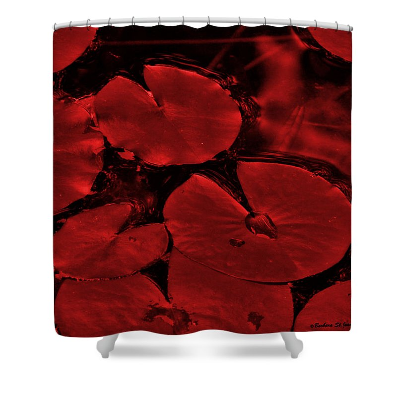 Photography Shower Curtain featuring the photograph Red Ruby Tuesday by Barbara St Jean