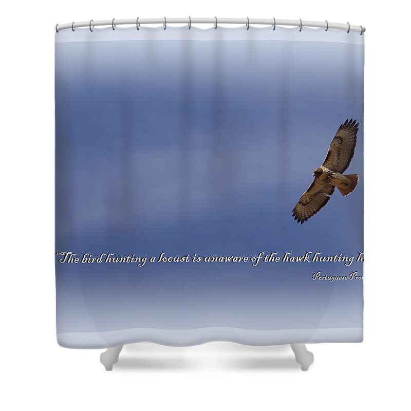 Red-tailed Hawk Shower Curtain featuring the photograph Red-tailed Hawk Card -bird by Travis Truelove