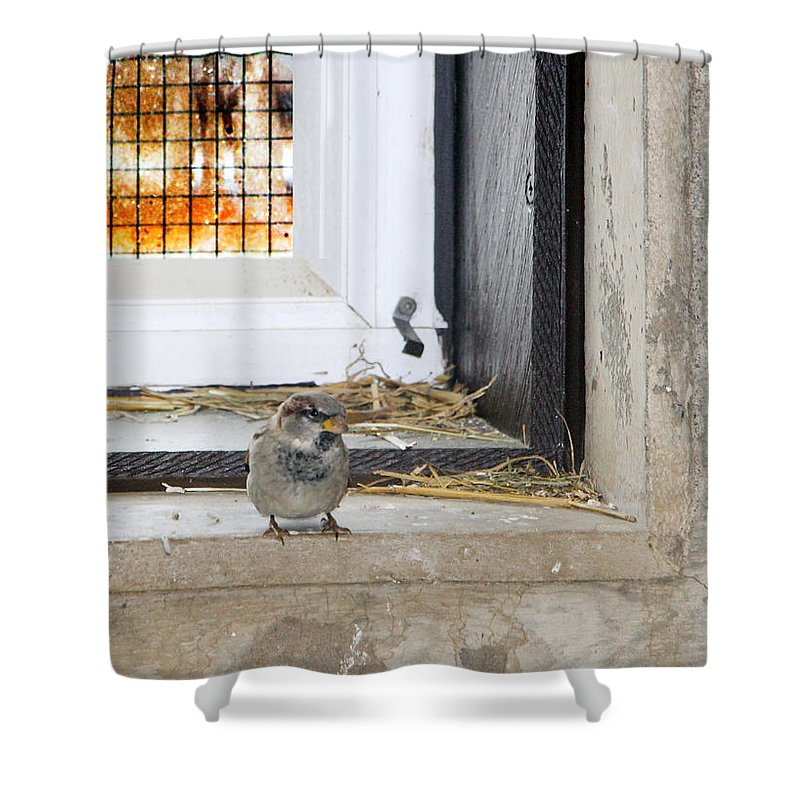Redemption Shower Curtain featuring the photograph Redemption by Munir Alawi