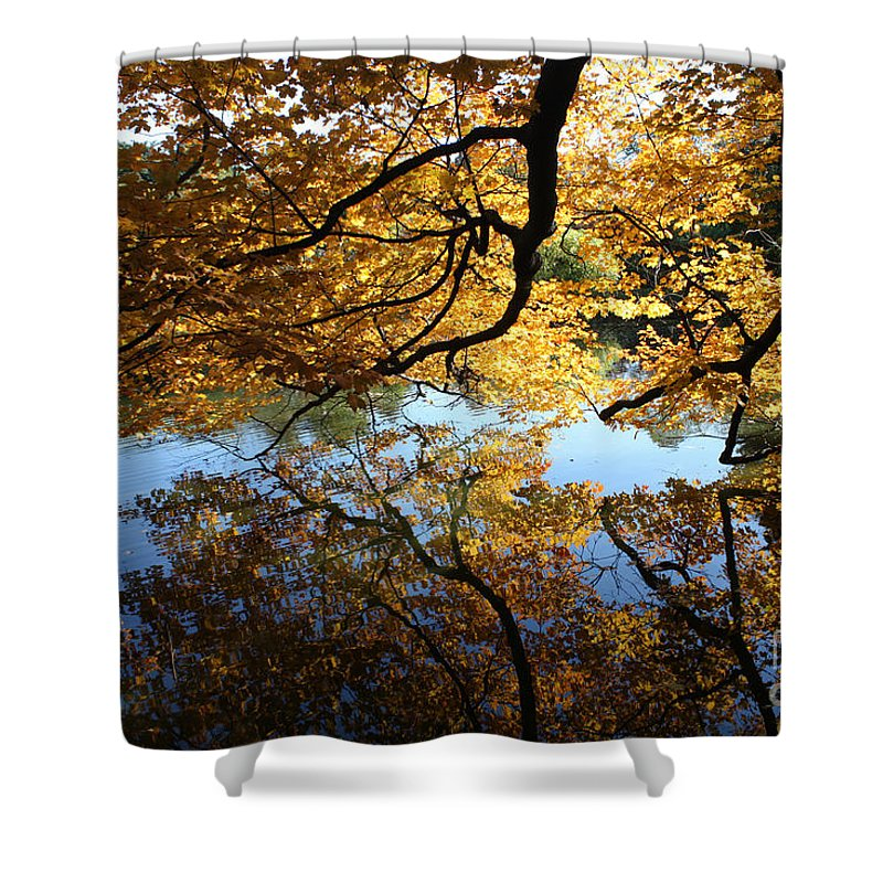 Reflections Shower Curtain featuring the photograph Reflections by John Telfer
