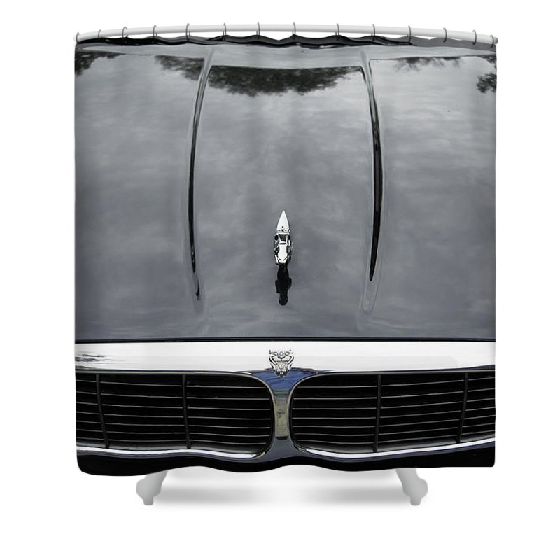 Jaguar Shower Curtain featuring the photograph Reflections by Louise Hill