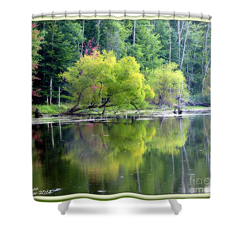 Water Shower Curtain featuring the photograph Reflections by Rennae Christman