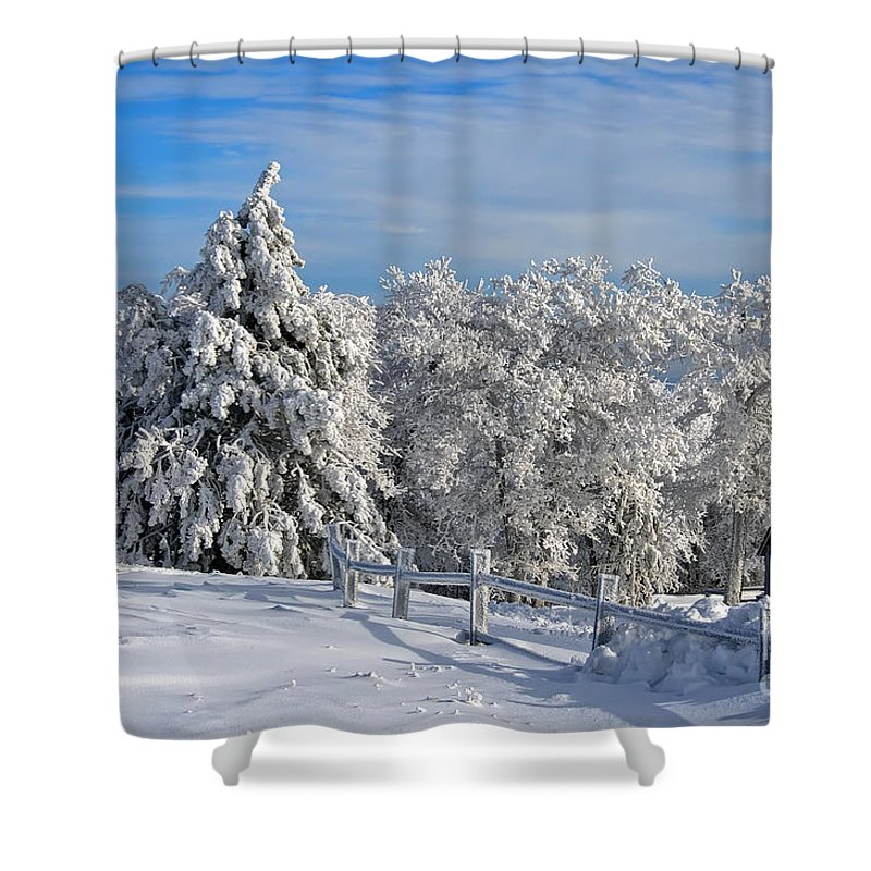 Snow Shower Curtain featuring the photograph Refresh by Lois Bryan