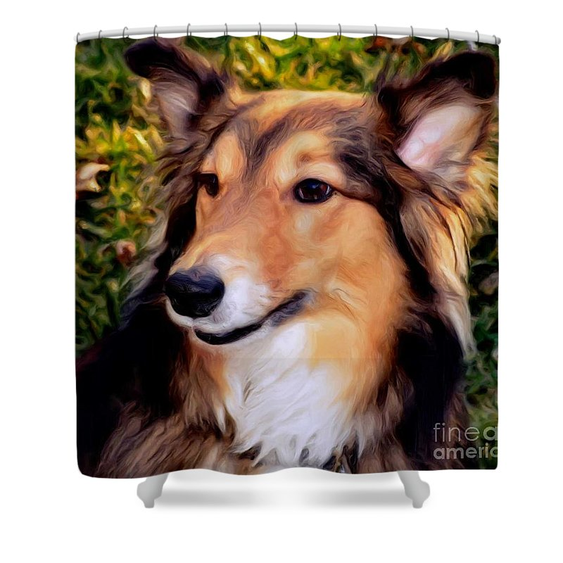 Collie Shower Curtain featuring the photograph Regal Shelter Dog by Luther Fine Art