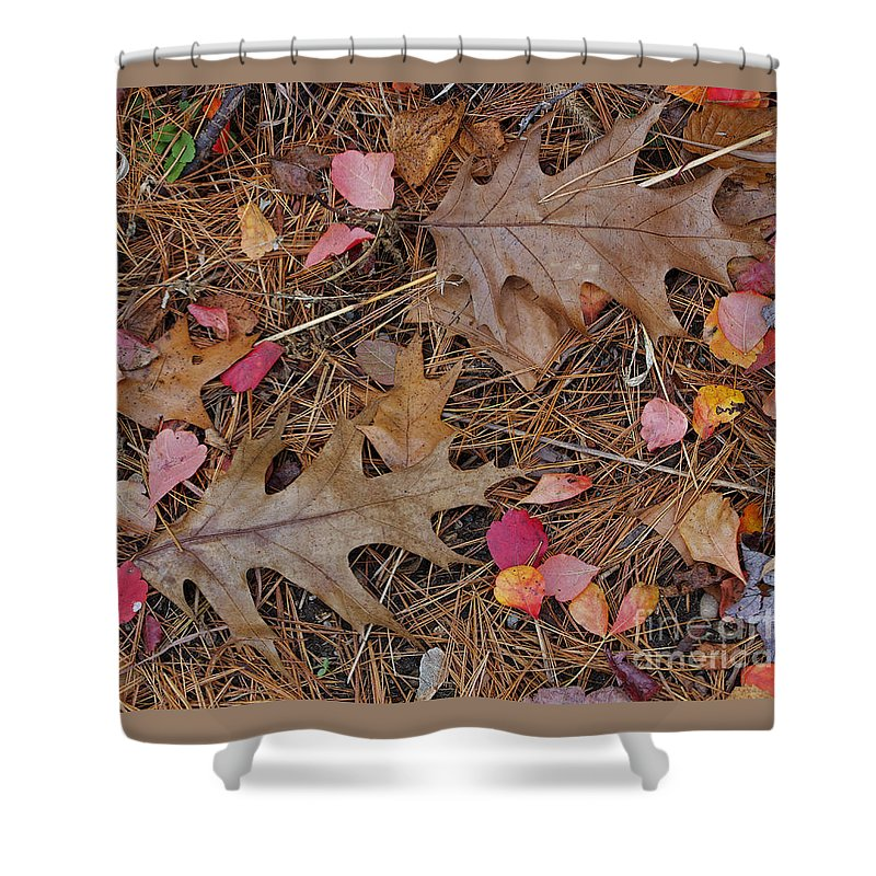 Leaf Shower Curtain featuring the photograph Remainders by Ann Horn