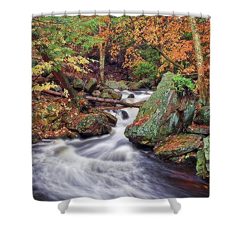 Landscape Shower Curtain featuring the photograph Ricketts Glen Falls by Marcia Colelli