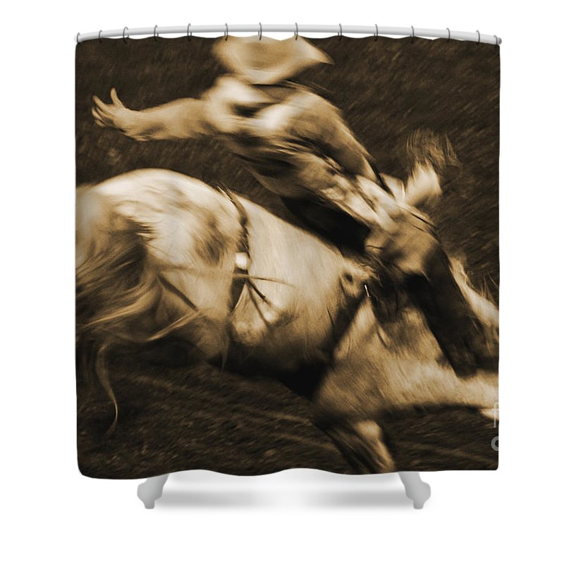 Equidae Equus Caballus Shower Curtain featuring the photograph Riding White Knight by J L Woody Wooden