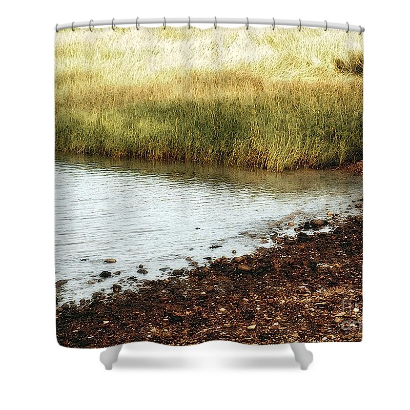 Marsh Shower Curtain featuring the painting Rippled Water Rippled Reeds by RC DeWinter