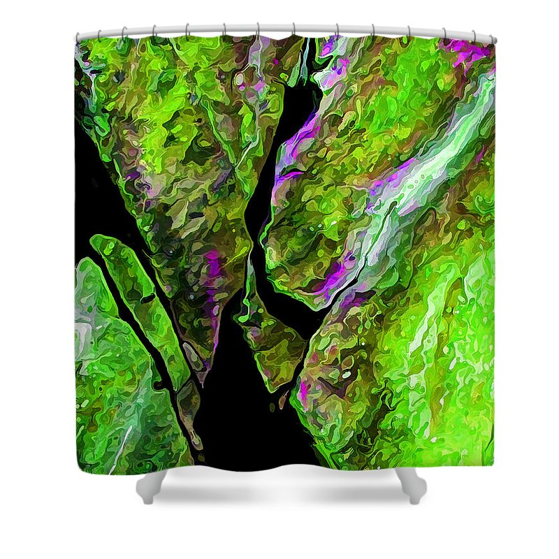 Nature Shower Curtain featuring the digital art Rock Art 20 by ABeautifulSky Photography by Bill Caldwell
