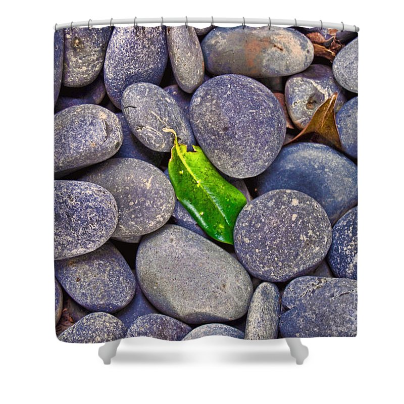 Wright Shower Curtain featuring the photograph Rocky Landing by Paulette B Wright