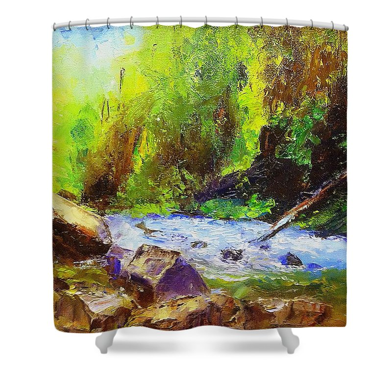 Water Shower Curtain featuring the painting Rocky Stream by Gail Kirtz