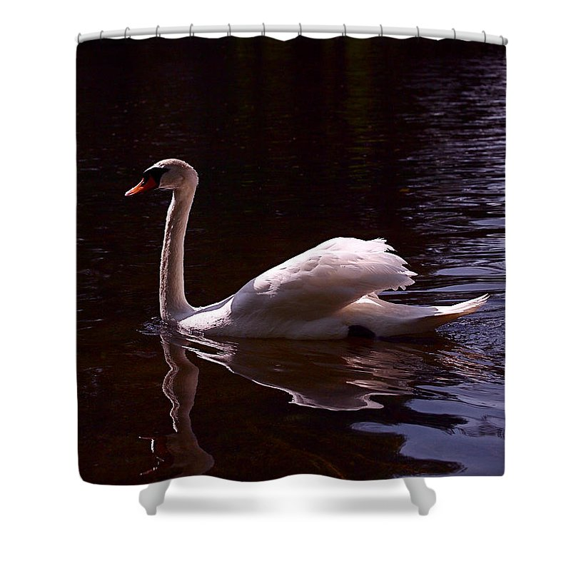 White Swan Shower Curtain featuring the photograph Romeo Or Juliet by Rona Black
