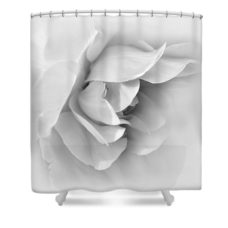 Rose Shower Curtain featuring the photograph Rose Flower Soft Gray by Jennie Marie Schell