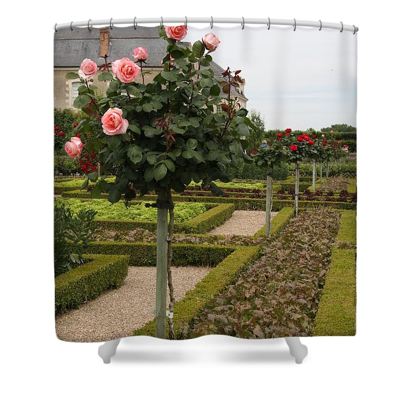 Roses Shower Curtain featuring the photograph Roses And Salad - Chateau Villandry by Christiane Schulze Art And Photography