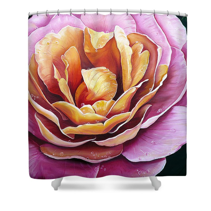 Rose Painting Pink Yellow Floral Painting Flower Bloom Botanical Painting Botanical Painting Shower Curtain featuring the painting Rosy Dew by Karin Dawn Kelshall- Best