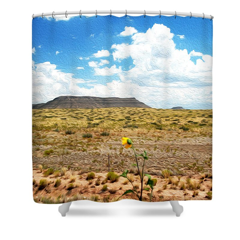 Sunflower Shower Curtain featuring the photograph Route 66 Arizona by Tracy Winter