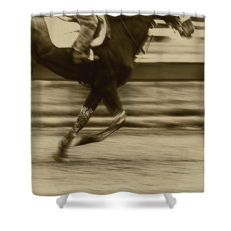 Horse Shower Curtain featuring the photograph Run by Margie Hurwich