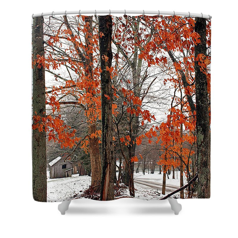 Landscape Shower Curtain featuring the photograph Rustic Winter by Todd Blanchard