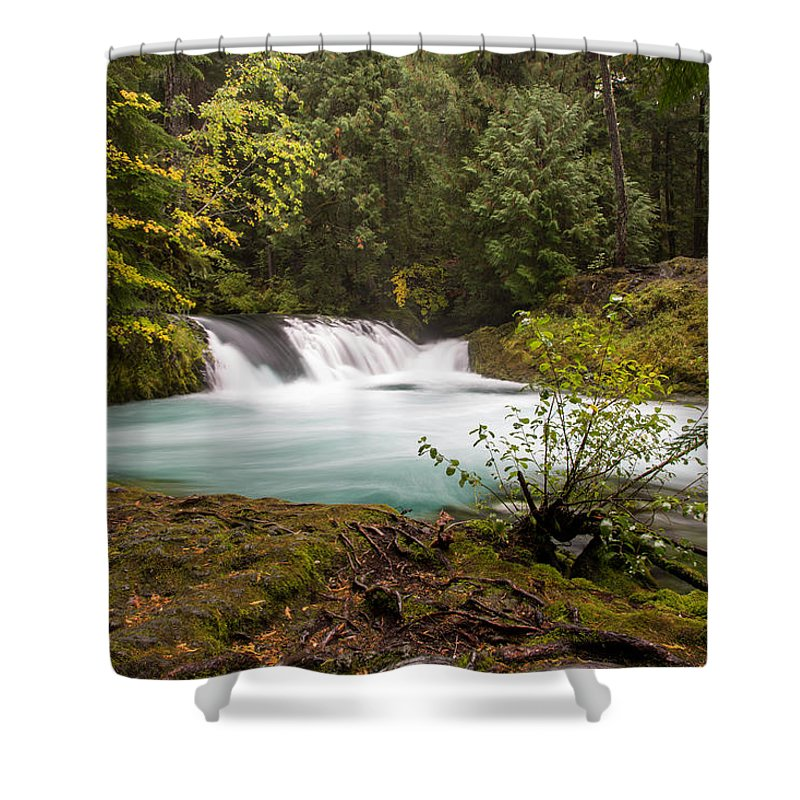 Sahalie Falls Shower Curtain featuring the photograph Sahalie Oasis by John Daly