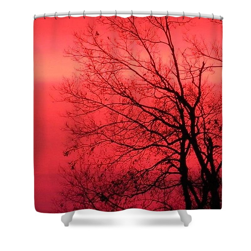 Kentucky Shower Curtain featuring the photograph Sailor's Warning by Carlee Ojeda