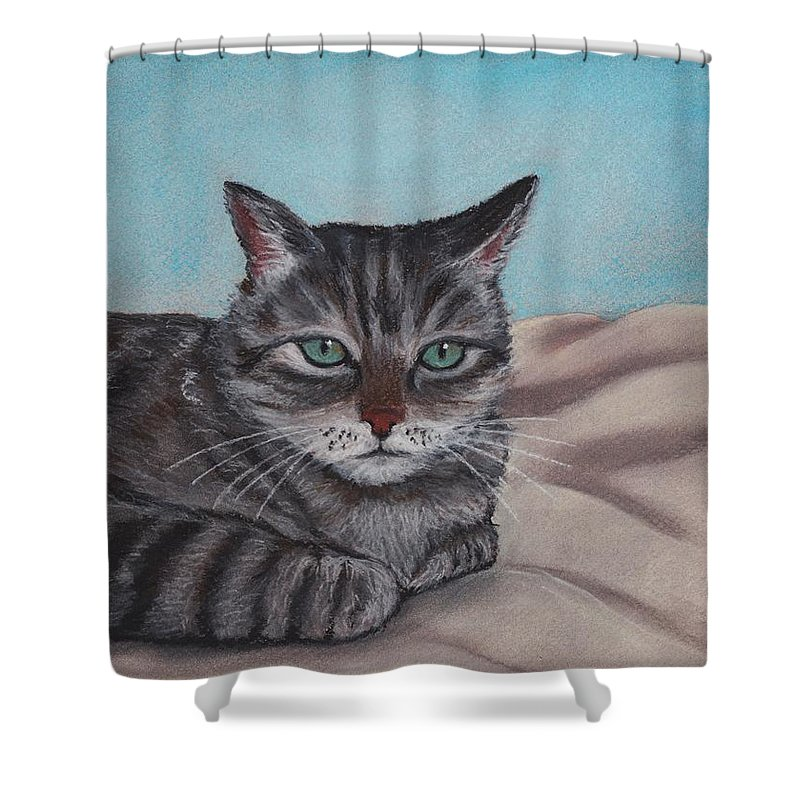Cat Shower Curtain featuring the painting Sam by Anastasiya Malakhova