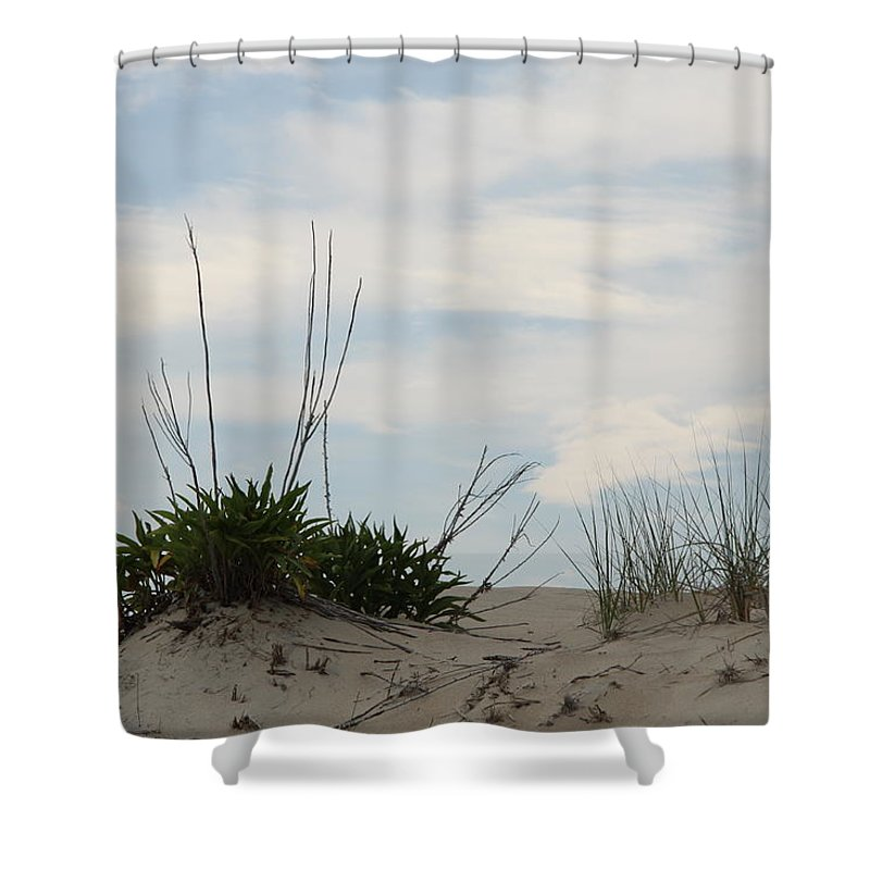 Dune Shower Curtain featuring the photograph Delaware Sand Dune by Christiane Schulze Art And Photography