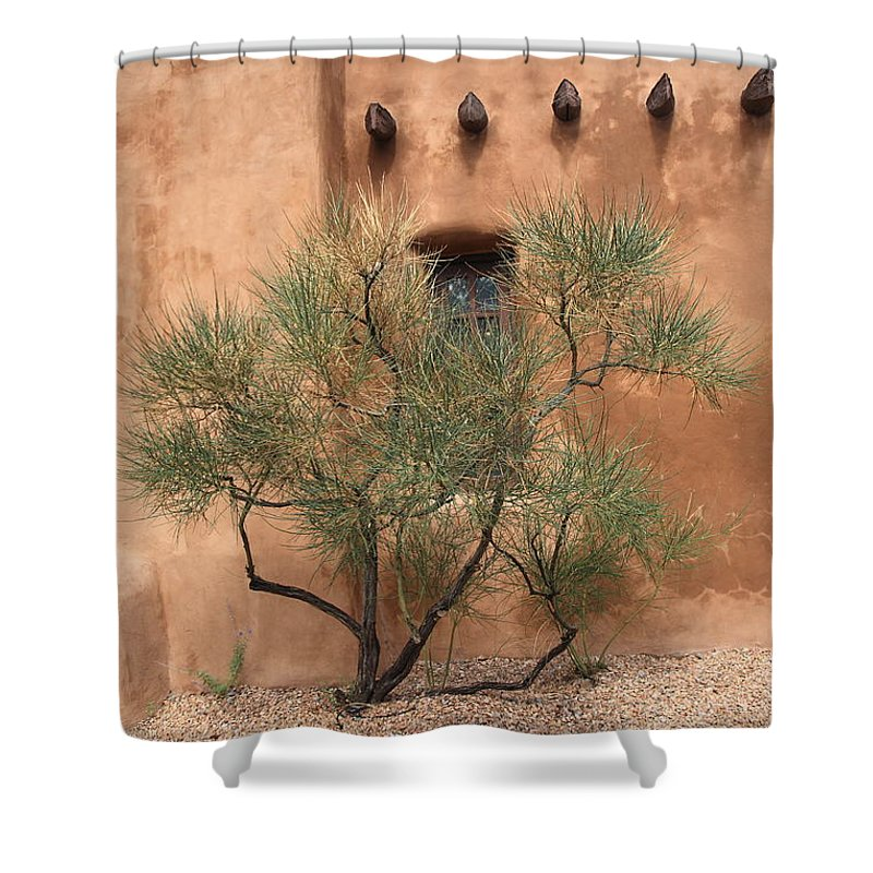 Adobe Shower Curtain featuring the photograph Santa Fe - Adobe Building And Tree by Frank Romeo
