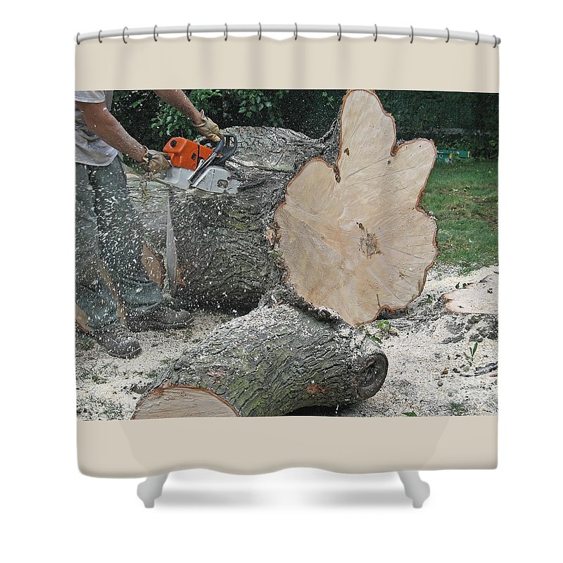 Tree Shower Curtain featuring the photograph Sawing A Log by Ann Horn