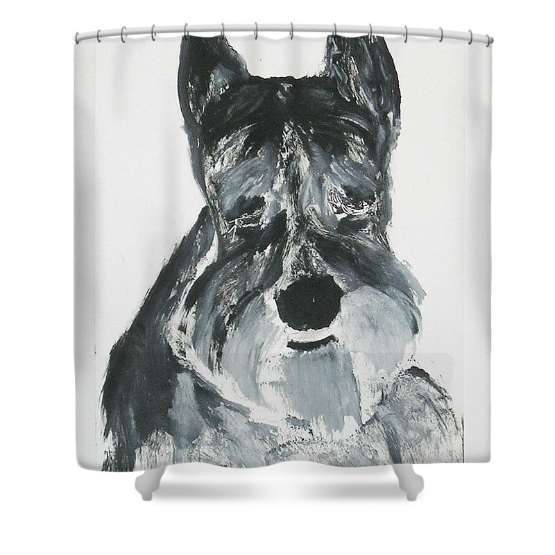 Dog Shower Curtain featuring the mixed media Schnauzing Around by Cori Solomon