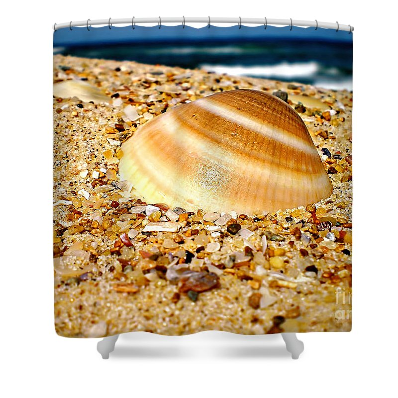 Photography Shower Curtain featuring the photograph Sea Beyond The Shell by Kaye Menner