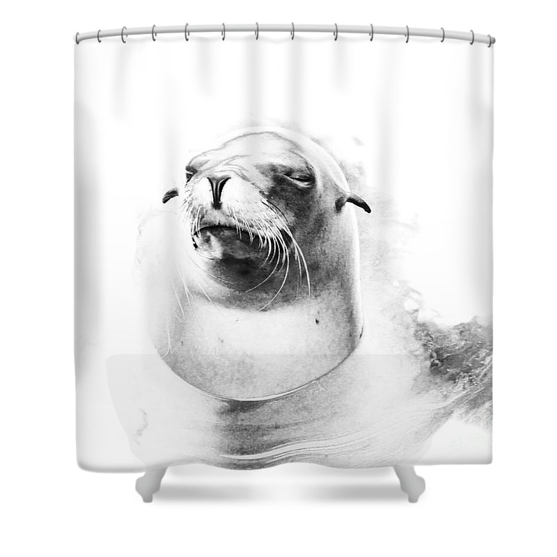 Abstract Shower Curtain featuring the photograph Sea Lion Abstract by TN Fairey