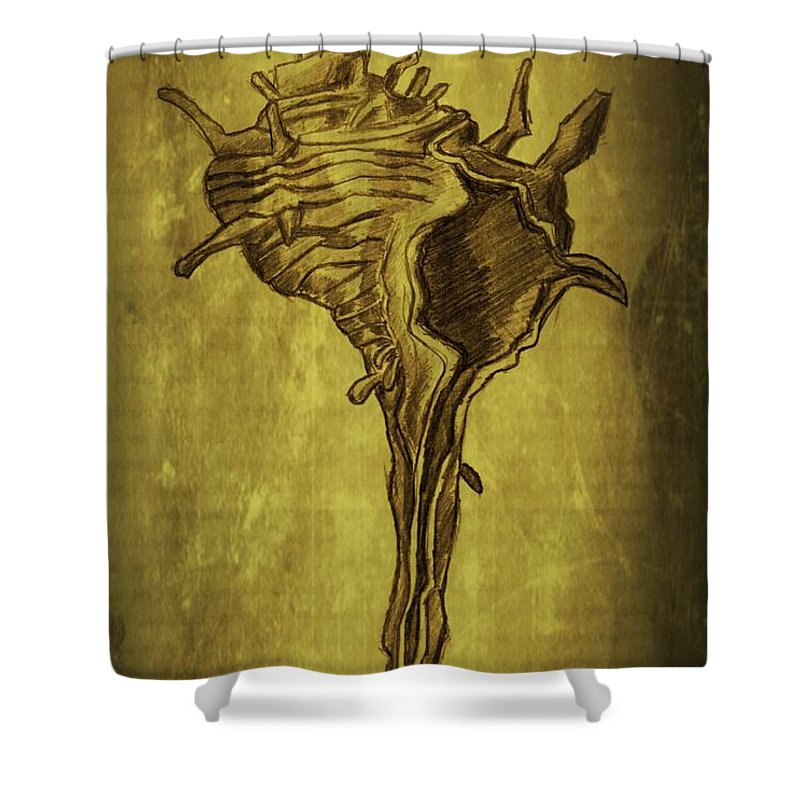 Drawing Shower Curtain featuring the drawing Sea Shell 1 by Dimitra Papageorgiou