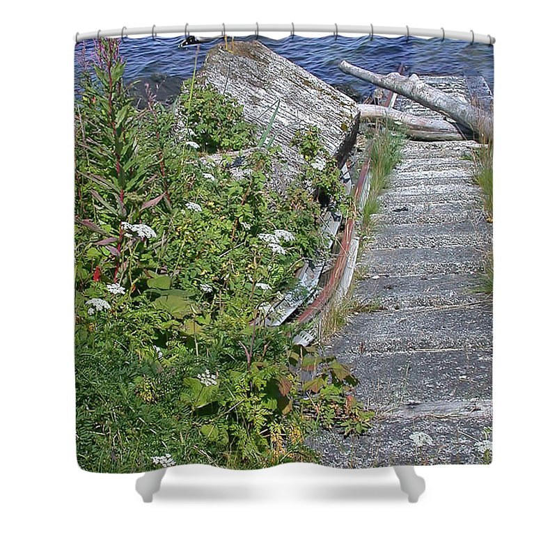Seagull Steps Shower Curtain featuring the photograph Seagull Steps Guard Island Alaska by Bellesouth Studio