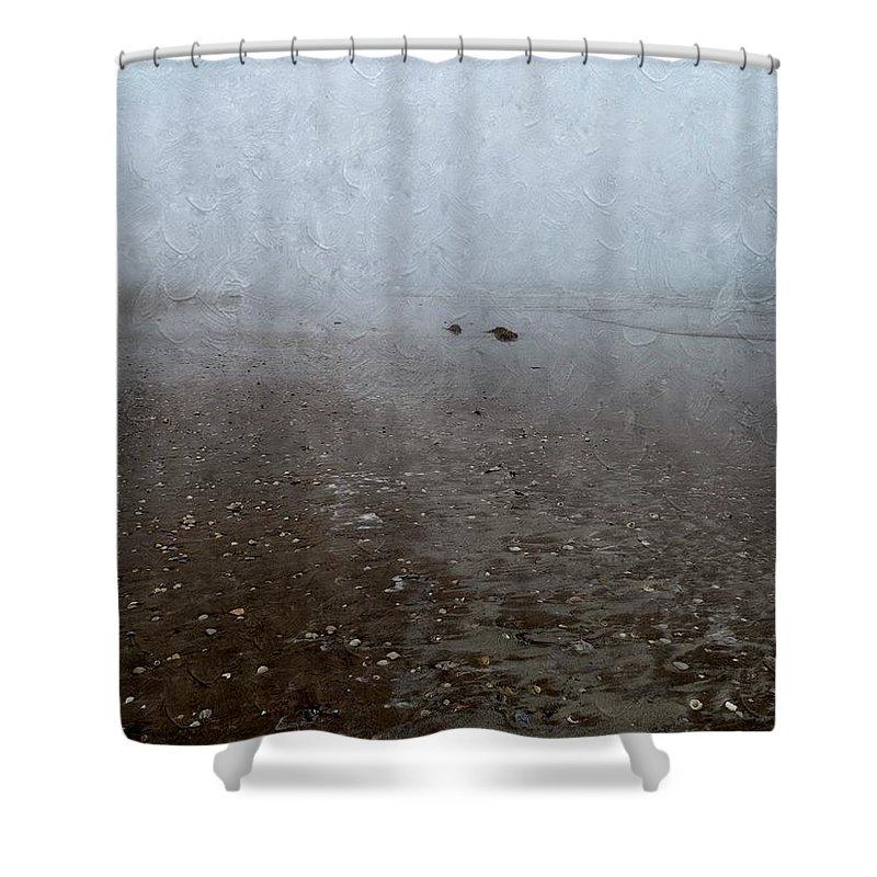 Seashells Shower Curtain featuring the photograph Seashells On Foggy Beach by Annie Adkins