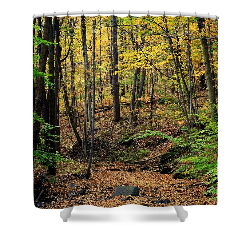 Season Shower Curtain featuring the photograph Seasons Change by Frozen in Time Fine Art Photography