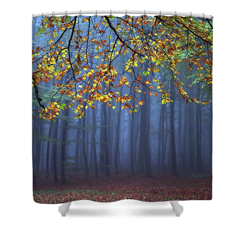 Autumn Shower Curtain featuring the photograph Seconds Before The Light Went Out by Roeselien Raimond