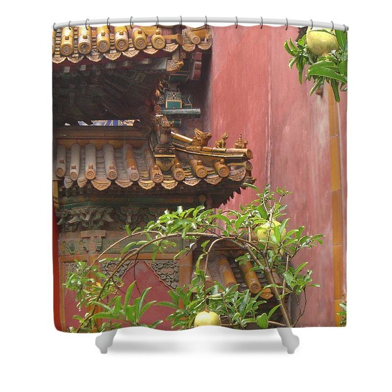 Oriental Shower Curtain featuring the photograph Secret Garden by Barbie Corbett-Newmin