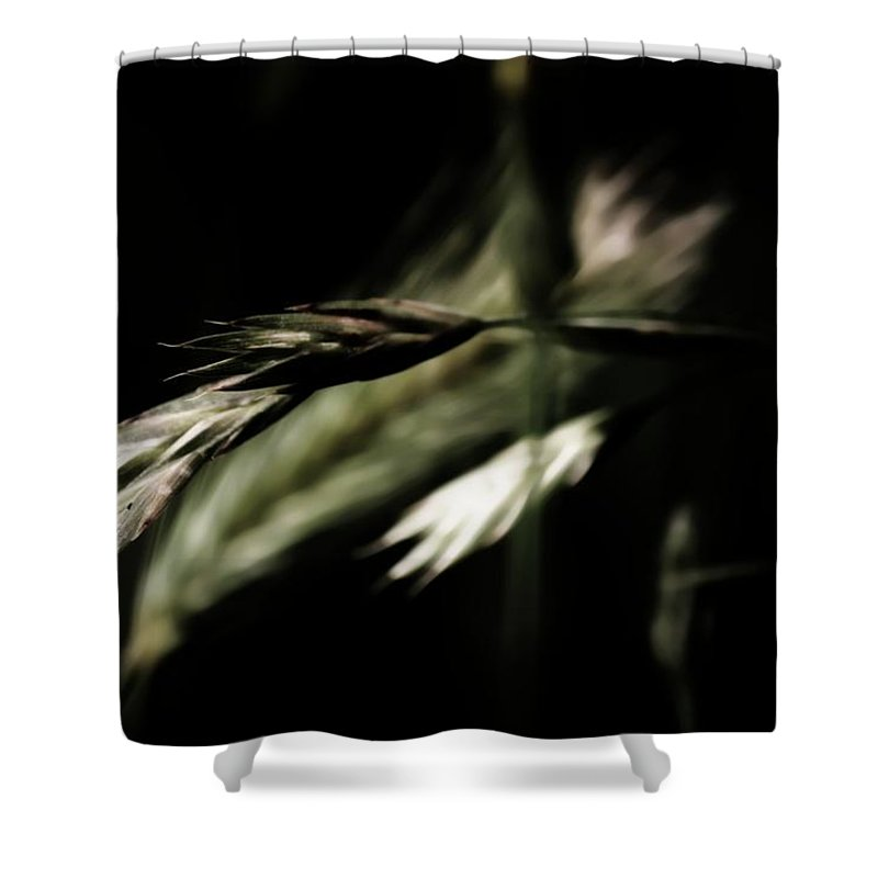 Black Shower Curtain featuring the photograph Secretive by Jessica Shelton