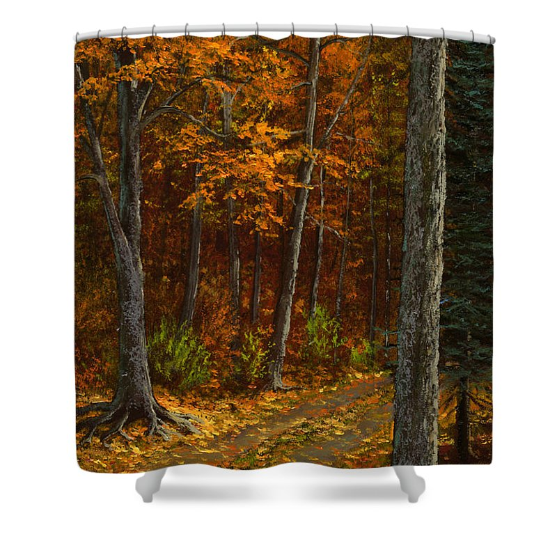 Landscape Shower Curtain featuring the painting Seldom Used by Frank Wilson