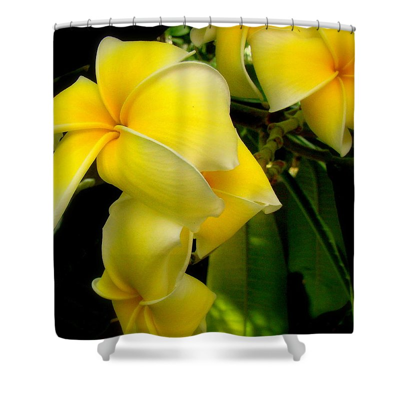 Fine Art Shower Curtain featuring the photograph Sensual by Rodney Lee Williams