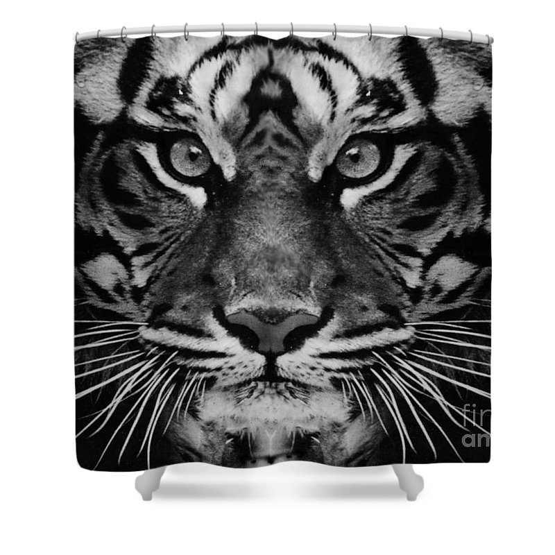 Tiger Shower Curtain featuring the photograph Serious by Ben Yassa