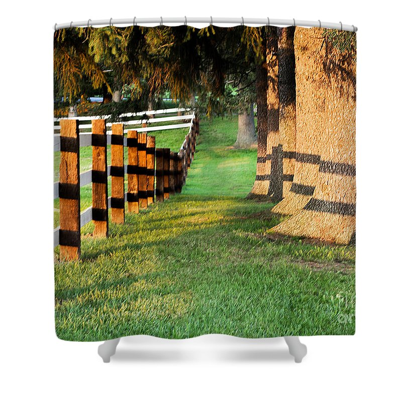 Fence Shower Curtain featuring the photograph Shadow Fencing by Barbara McMahon