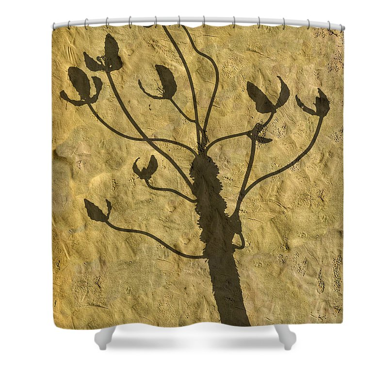 Photography Shower Curtain featuring the photograph Shadow Of The Triffids by Paul Wear