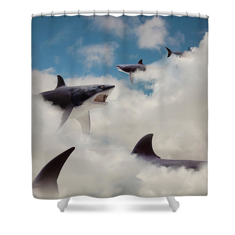 Risk Shower Curtain featuring the photograph Sharks Floating In Clouds by John M Lund Photography Inc